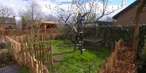 Je tuin snoeien en huis beveiligen | Eigen Huis en Tuin
