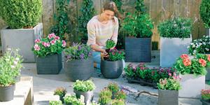 Hoe maak je de tuin lente-proof?
