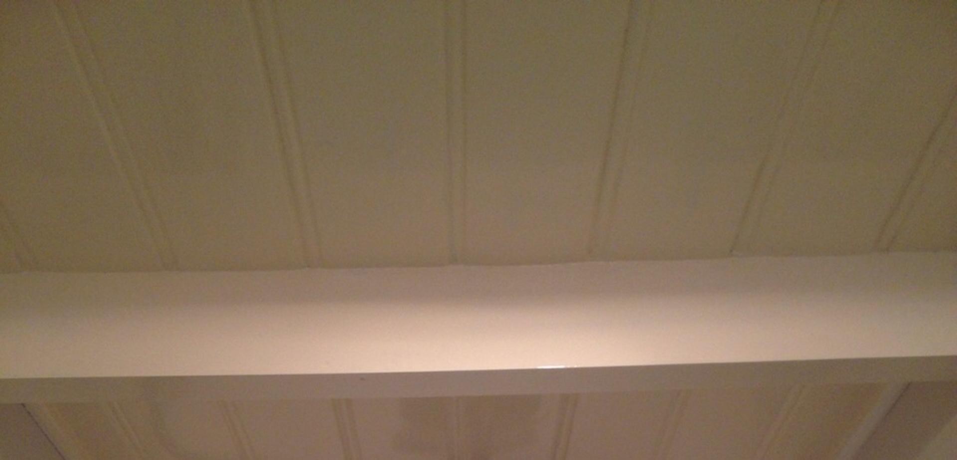 geschikte verf badkamerplafond voordemakersnl